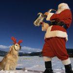 #LAventDeLaLyonne : une chanson par jour avant Noël